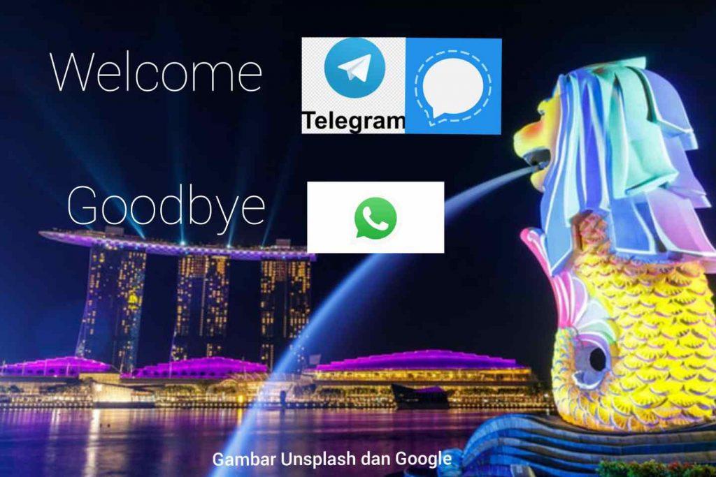 Akibat Kebijakan Privasi WhatsApp , Warga Singapura Pilih Signal dan Telegram
