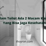 Dalam Toilet Ada 2 Macam Kloset, Yang Bisa Jaga Kesehatan